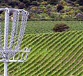 New Zealand Disc Golf